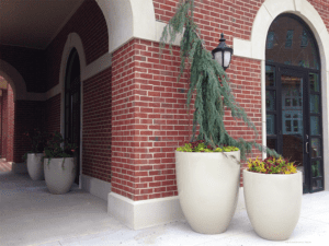 Planters for an Office