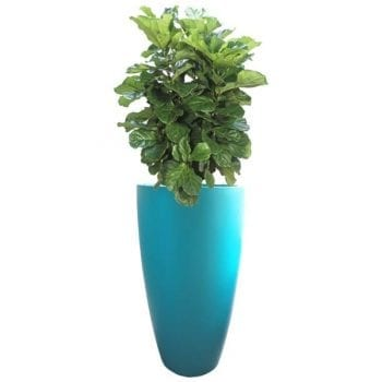tall teal fiberglass planter