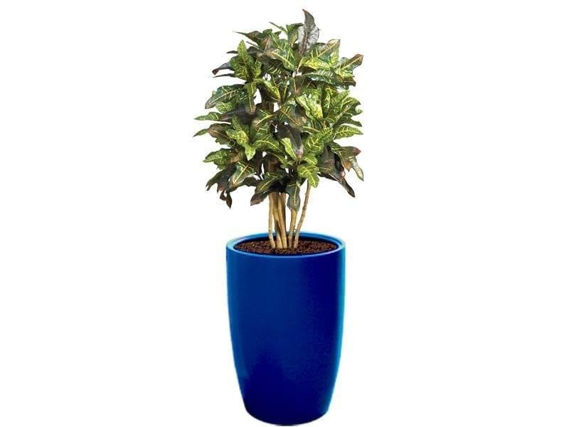 tall round blue fiberglass planter