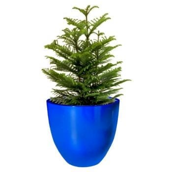 blue round fiberglass planter