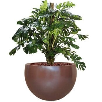 round brown fiberglass planter
