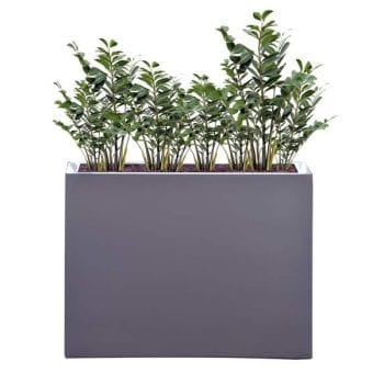 tall gray rectangular fiberglass planter