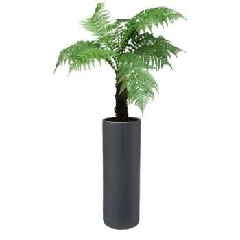 tall cylindrical gray fiberglass planter
