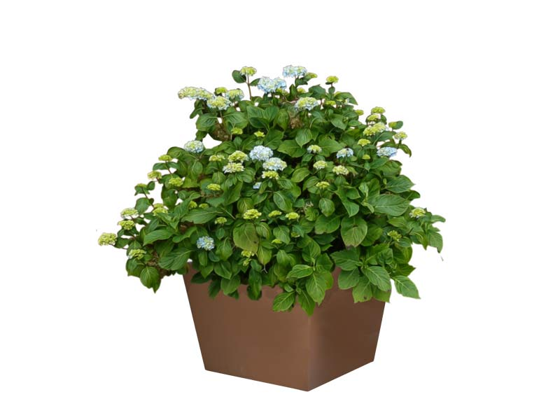 tapered square brown fiberglass planter