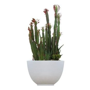 tapered square white fiberglass planter