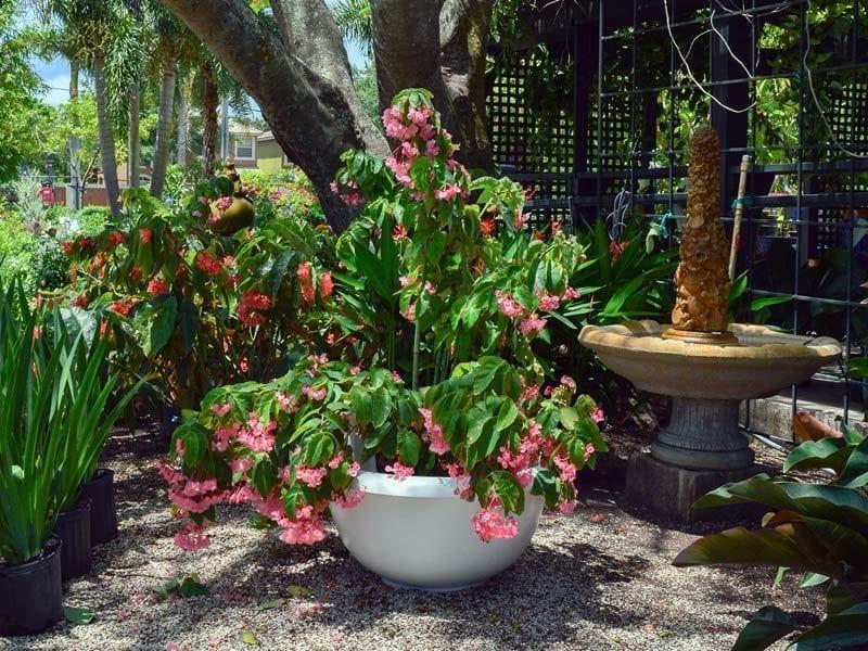 short round garden fiberglass planter