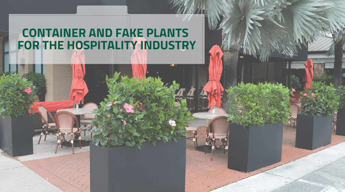 CONTAINER AND FAKE PLANTS FOR THE HOSPITALITY INDUSTRY