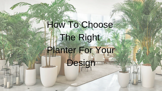 How To Choose The Right Planter For Your Design