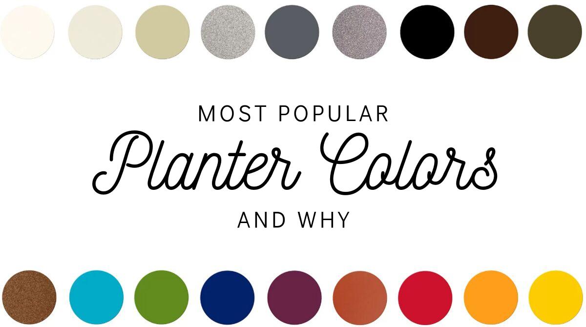 Most Popular Planter Colors