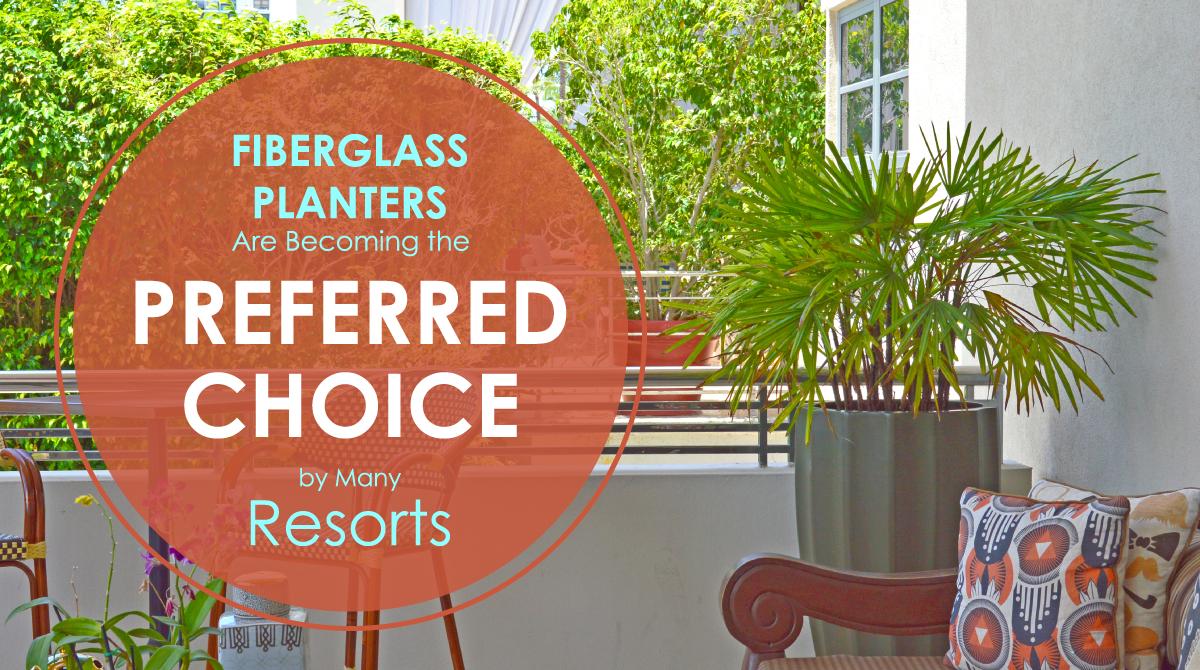 Fiberglass Planters Are A Preferred Choice
