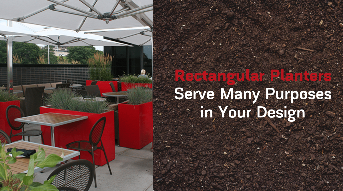 RECTANGULAR PLANTERS SERVE MANY PURPOSES IN YOUR DESIGN