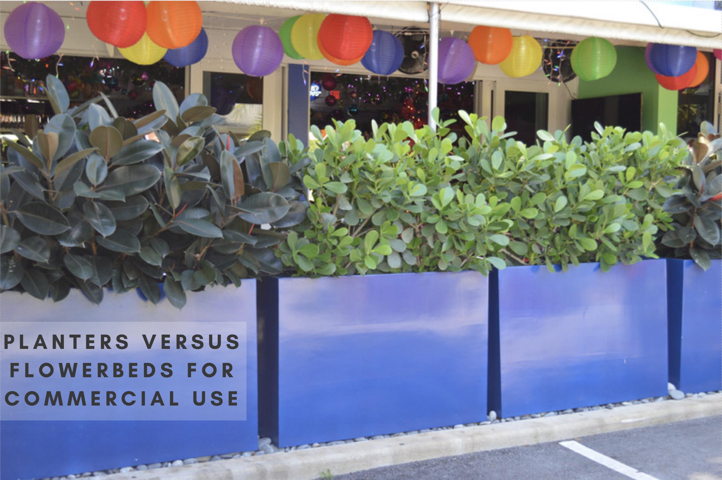 Planters Versus Flowerbeds
