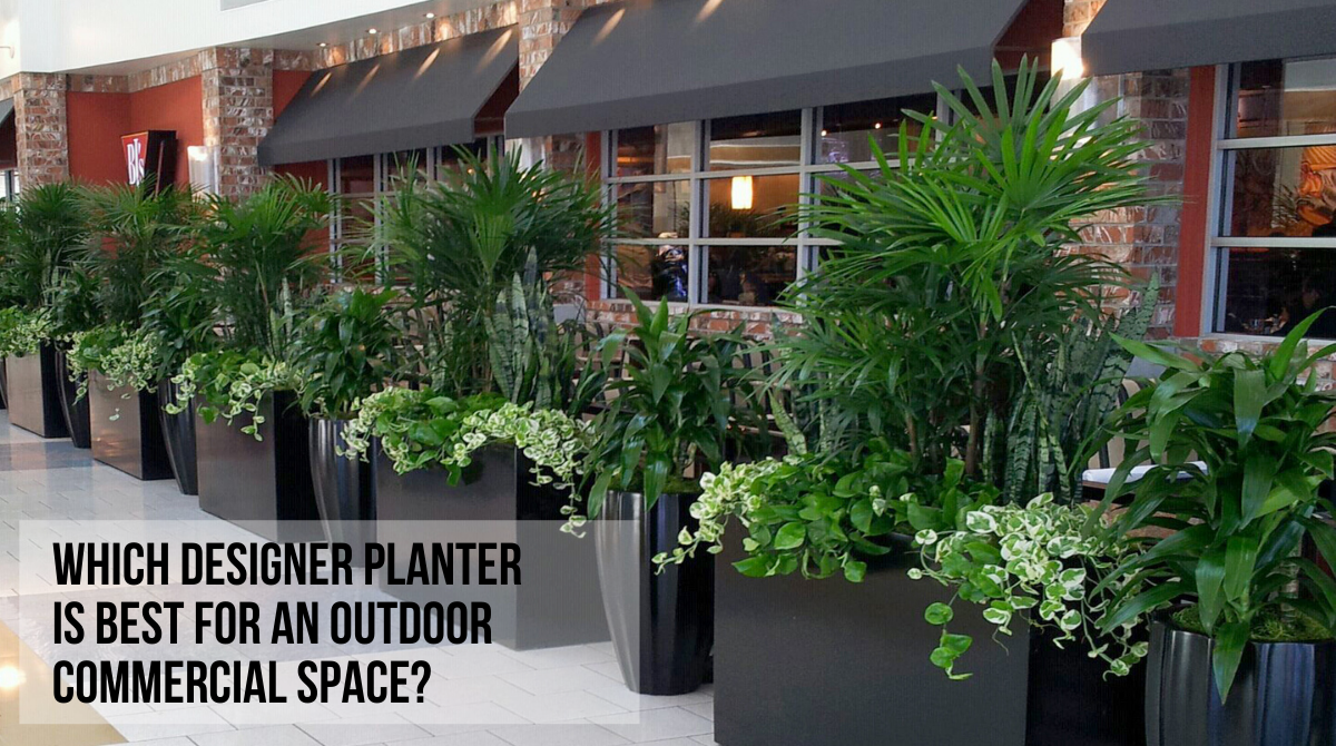 WHICH DESIGNER PLANTER IS BEST FOR AN OUTDOOR COMMERCIAL SPACE