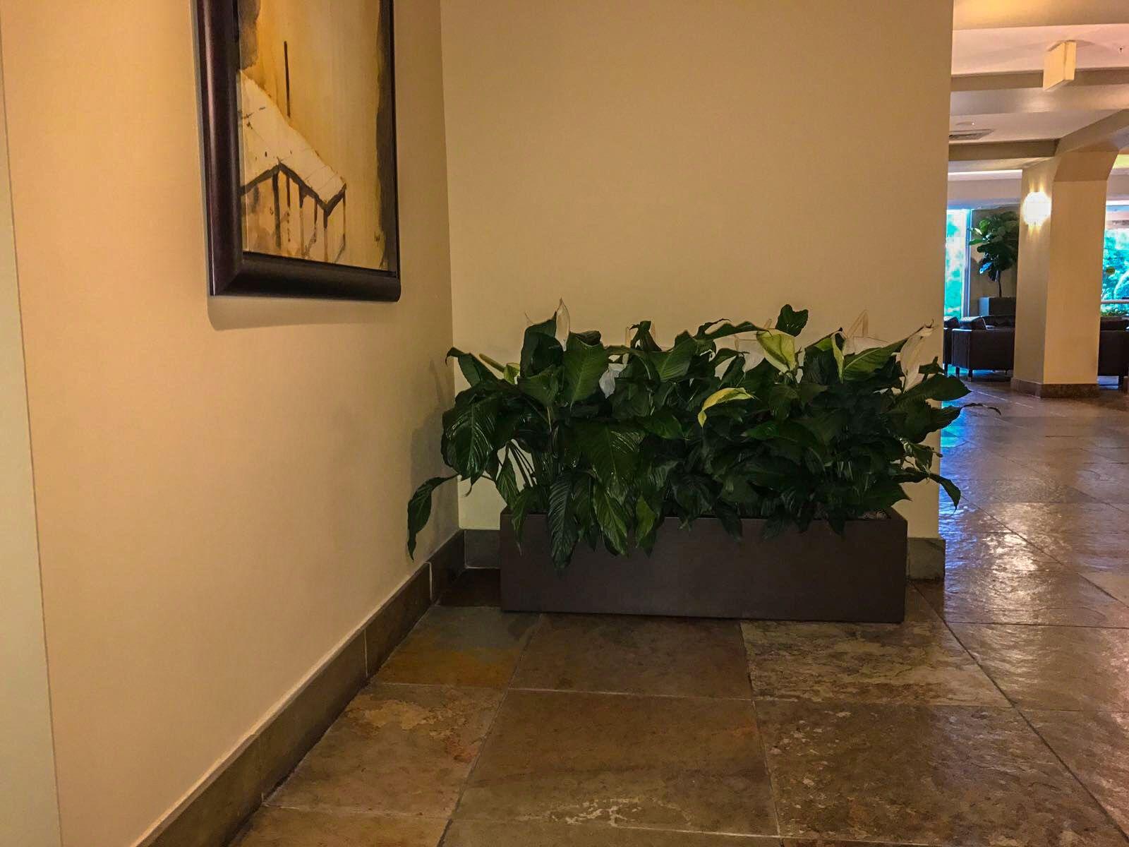 fiberglass-planter
