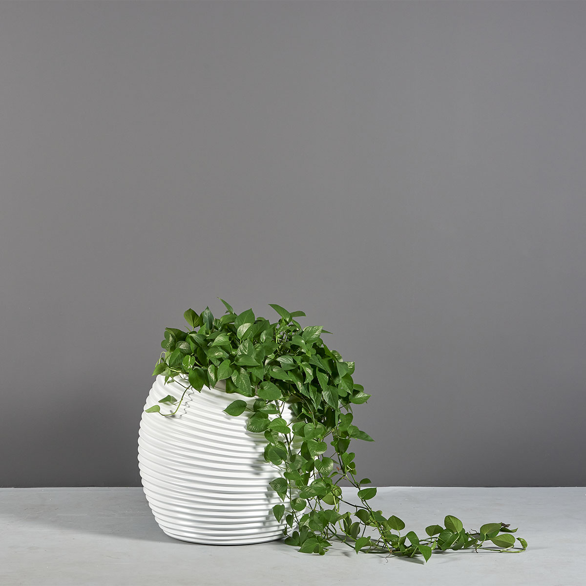 Spiral Modern Globe Planter