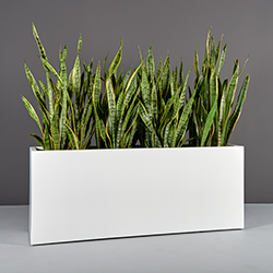Traditional Planters