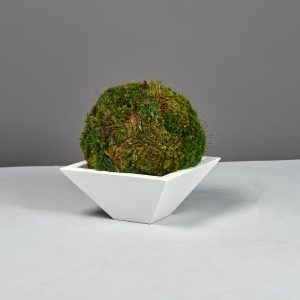 Malaga Square Tabletop Planter