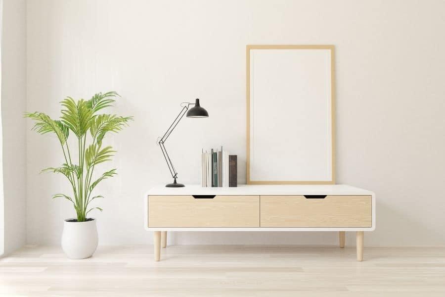 plants in interior design
