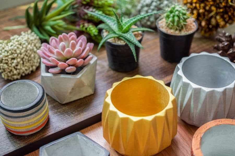 Choosing the right color for planters